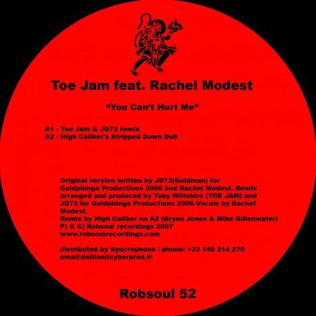 Toe Jam feat.Rachel Modest - You Cant't Hurt Me