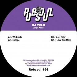 DJ W!ld - Vinyl Killer
